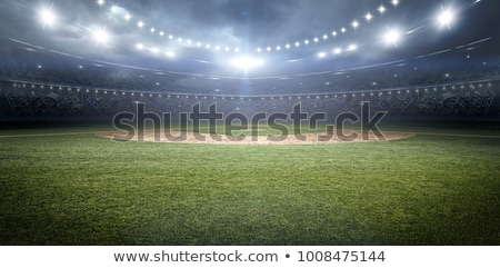 Baseball stadion vector ontwerp illustratie vierkante Stockfoto © RAStudio