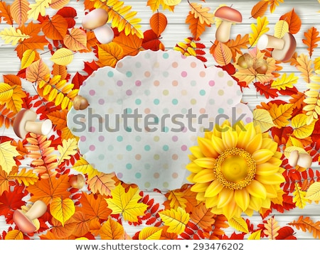 frame with flower nuts and mushrooms eps 10 stock photo © beholdereye