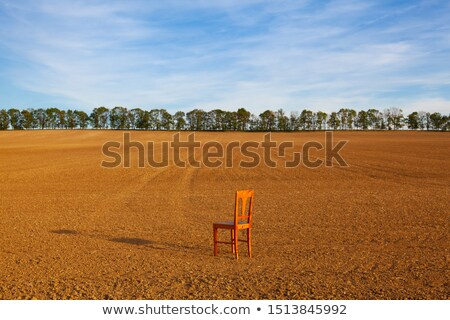 Vide chaise en bois orge domaine coucher du soleil paysage Photo stock © CaptureLight