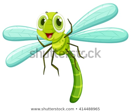 Libélula cara feliz ilustração feliz natureza fundo Foto stock © bluering