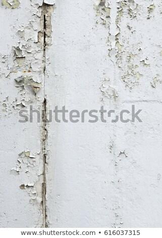 White paint peeling off the wooden wall Stock photo © stevanovicigor