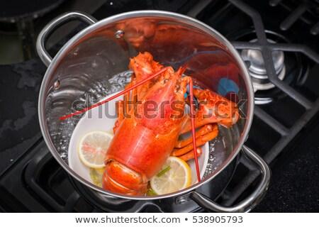 Cozinhado vermelho servido branco prato pronto Foto stock © Klinker