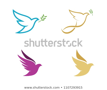 Dove logo Template Stock photo © Ggs