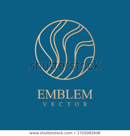 волна · логотип · шаблон · красоту · символ · икона - Сток-фото © ggs