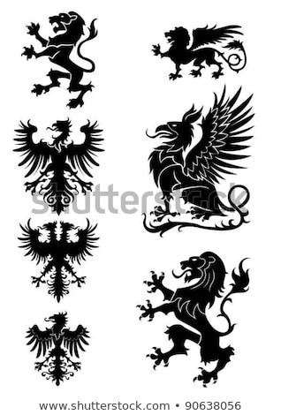 Animais elementos conjunto cavalo leão veado Foto stock © Genestro