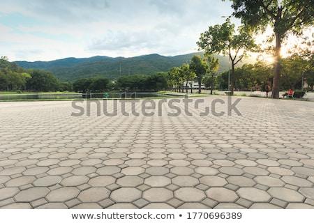 кирпичных · тротуар · дороги · перспективы · конкретные · строительство - Сток-фото © zurijeta