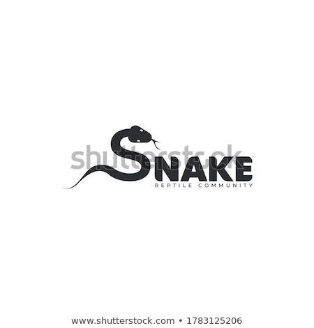 A snake and a letter S Stock photo © bluering