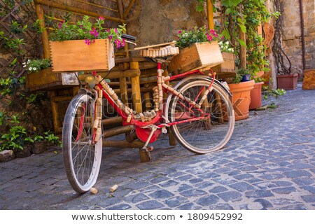 charming old streets of italian villages decorated with flowers stock photo © freesurf