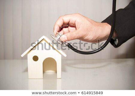 House Stethoscope Concept Stock photo © Krisdog