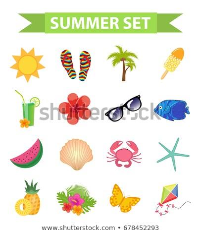 Hello nyár ikon gyűjtemény rajz stílus tengerpart Stock fotó © lucia_fox