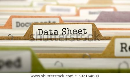 Dobrador catálogo dados folha Foto stock © tashatuvango
