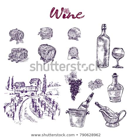 цифровой · вектора · подробный · винограда · рисованной · ретро - Сток-фото © frimufilms