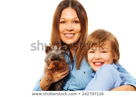 преданность · собака · посвященный · горизонтальный - Сток-фото © is2