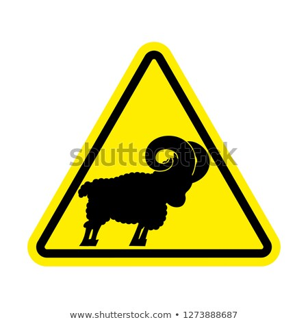 attention of sheep caution farm is an animal yellow prohibitor stock photo © popaukropa