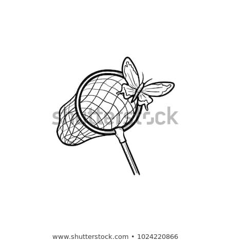 Pillangó net kézzel rajzolt rajz ikon skicc Stock fotó © RAStudio