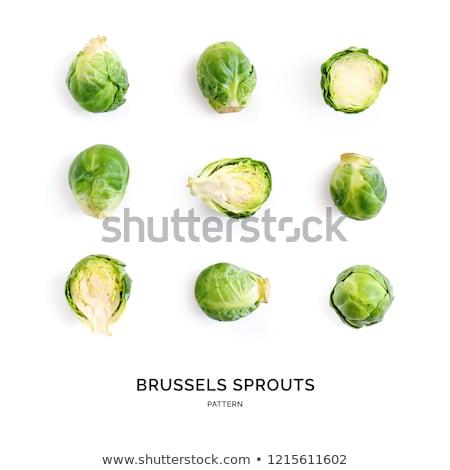Brüsszel hajtás stúdió fehér étel táska Stock fotó © cynoclub