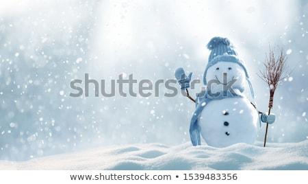 Boneco De Neve Inverno Cartao Desenho Animado
