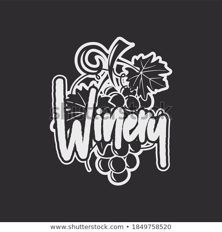 wine winery logo template drink alcoholic graffiti art beverage symbol vine icon and typography stock photo © jeksongraphics