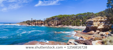 Rocky coastal cove in south coast NSW Australia panorama Stock photo © lovleah