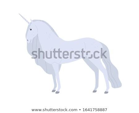 szett · különböző · vektor · izolált · rajz · lovak - stock fotó © robuart
