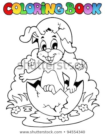 Пасху · кролик · яйца · окрашенный · готовый · праздник - Сток-фото © clairev