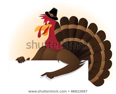zarándok · Törökország · madár · rajzfilm · kabala · karakter · sarok - stock fotó © hittoon