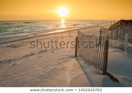 Beautiful Sunset Over the Ocean with Sand Fencing Stock photo © feverpitch