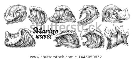 熱帯 · 海 · 海洋 · 波 · 嵐 · ベクトル - ストックフォト © pikepicture