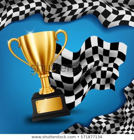Zwycięzca złoty trofeum wyścigi flagi sportowe Zdjęcia stock © SArts