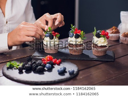 Fresh and tasty chocolate muffins served on plate Stock photo © dash