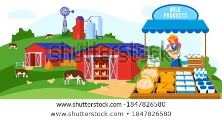 Marketplace with Dairy Product, Cheese Vector Stock photo © robuart