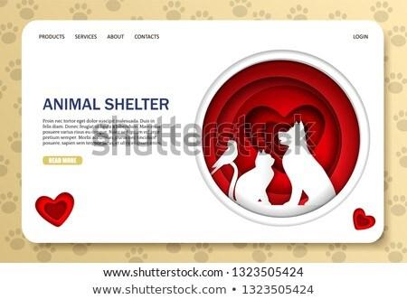 動物 シェルター 着陸 家族 ストックフォト © RAStudio