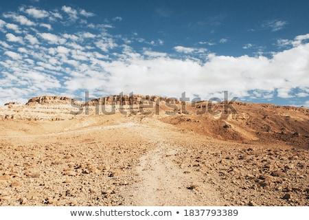 çöl · görüntü · gün · batımı · doğa · toprak · uzay - stok fotoğraf © Kirschner