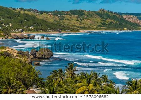 Bathsheba, East coast of Barbados, Caribbean Stock photo © phbcz