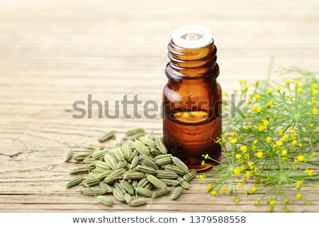 Fennel seeds with essential oil in a bottle Stock photo © bdspn