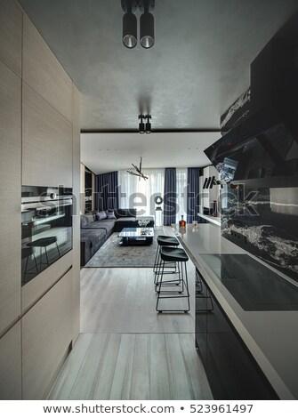 Noir modernes intérieur deux sombre blanche Photo stock © bezikus