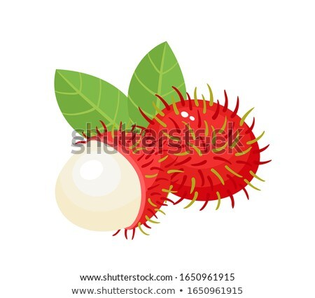 Exótico jugoso frutas vector aislado anunciante Foto stock © robuart