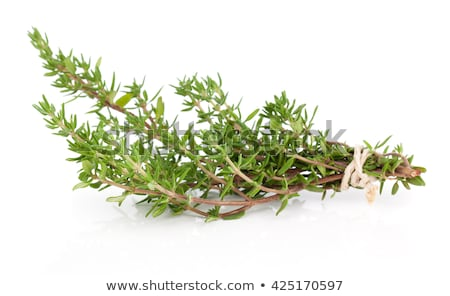 新鮮な · 暗い · 先頭 · 表示 · 食品 · 茂み - ストックフォト © Alex9500
