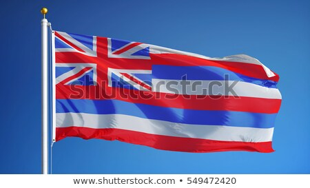 Bandeira Havaí elementos camadas Foto stock © nazlisart