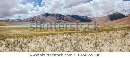 Himalayan lake Kyagar Tso, Ladakh, India Stock photo © dmitry_rukhlenko