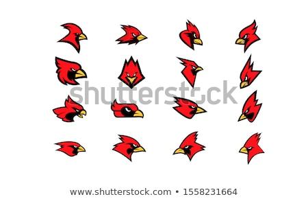 Cardinal Bird Head Mascot Black and White Stock photo © patrimonio