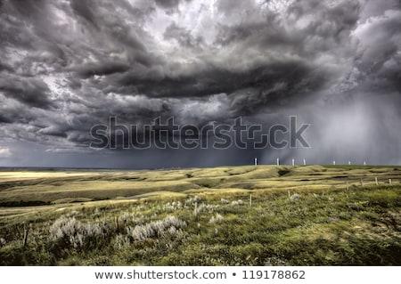 Onweerswolken saskatchewan zonsondergang prairie veld hemel Stockfoto © pictureguy