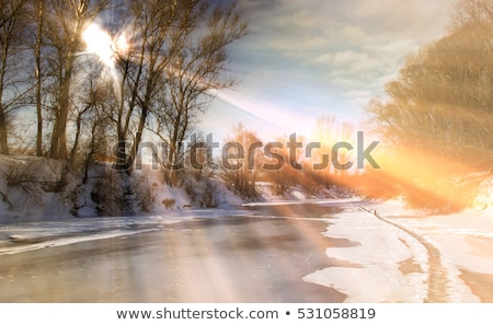 spring. thaw Stock photo © ultrapro
