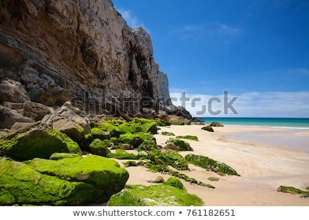 rochas · surfar · praia · turva · água · mar - foto stock © capturelight