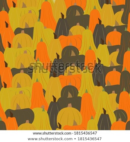 Stock photo: fall leaves making a border with pumpkin