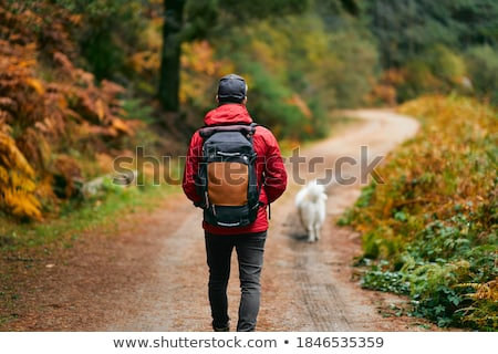 trekking · sziluett · naplemente · illusztráció · természet · jogging - stock fotó © adrenalina