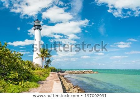 vuurtoren · eiland · Florida · USA · palm · groene - stockfoto © meinzahn
