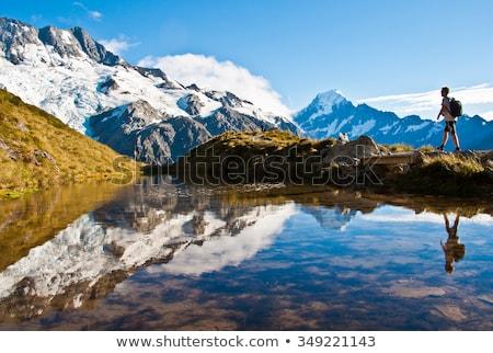 Кука Новая Зеландия долины дороги трава природы Сток-фото © jeayesy