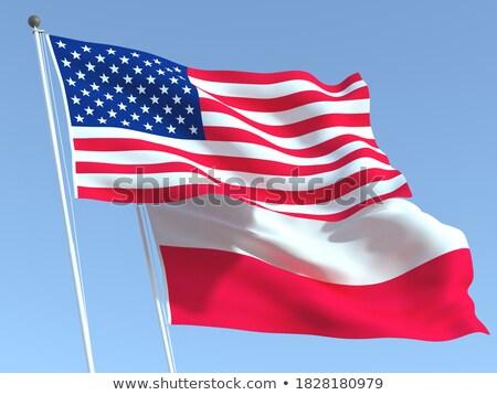Dois bandeiras Estados Unidos Polônia isolado Foto stock © MikhailMishchenko