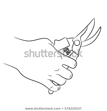hand holding cutter graphic design Stock photo © yupiramos
